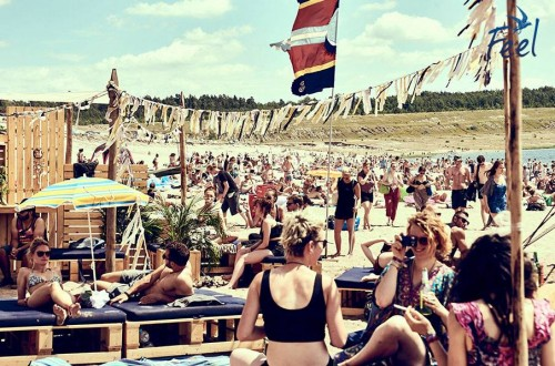 Feel Festival - Partybus